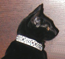 wide rhinestone cat collars