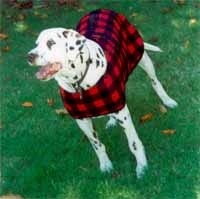 fleece dog jackets