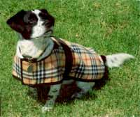 fleece plaid dog blankets