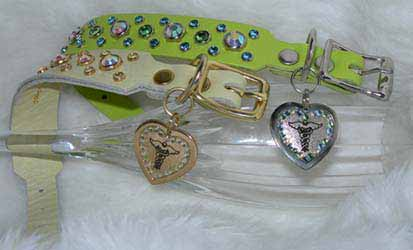 medical pet id tags and collars