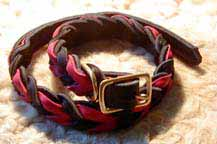 soft braid dog collars