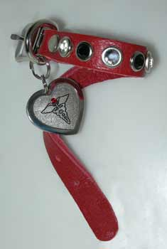 medical pet id tags collars