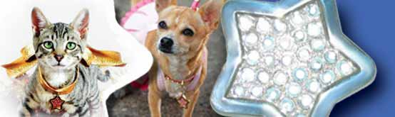 animalstars.com luxury pet boutique