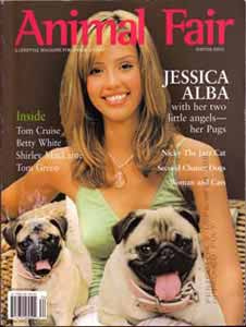 Animal Fair Jessica Alba dogs