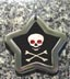 pirate flag id tags