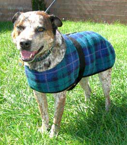 plaid fleece dog robes
