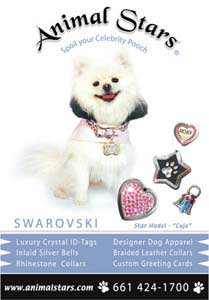white pomeranian dog actors