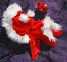 mrs clause dog dress coat outfit