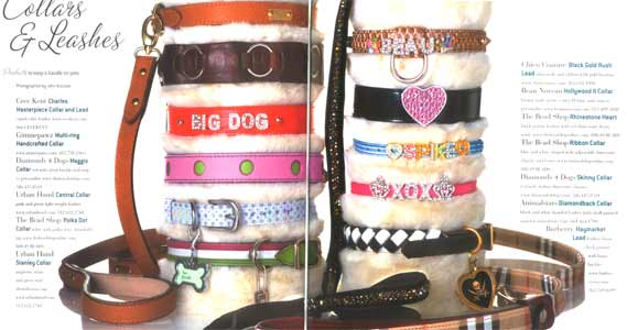 Pet Elite Animalstars collars