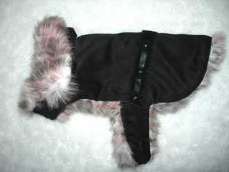 designer high fashion dog clothing