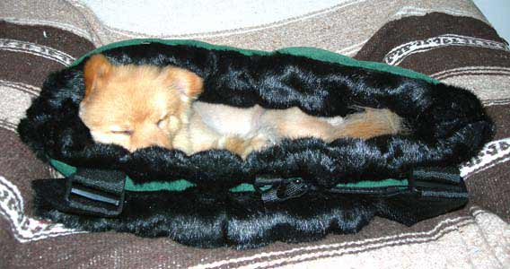 faux fur dog beds