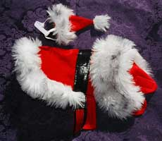 santa clause dog coat outfit costume