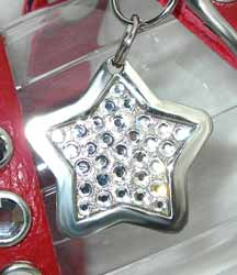diamond star tags